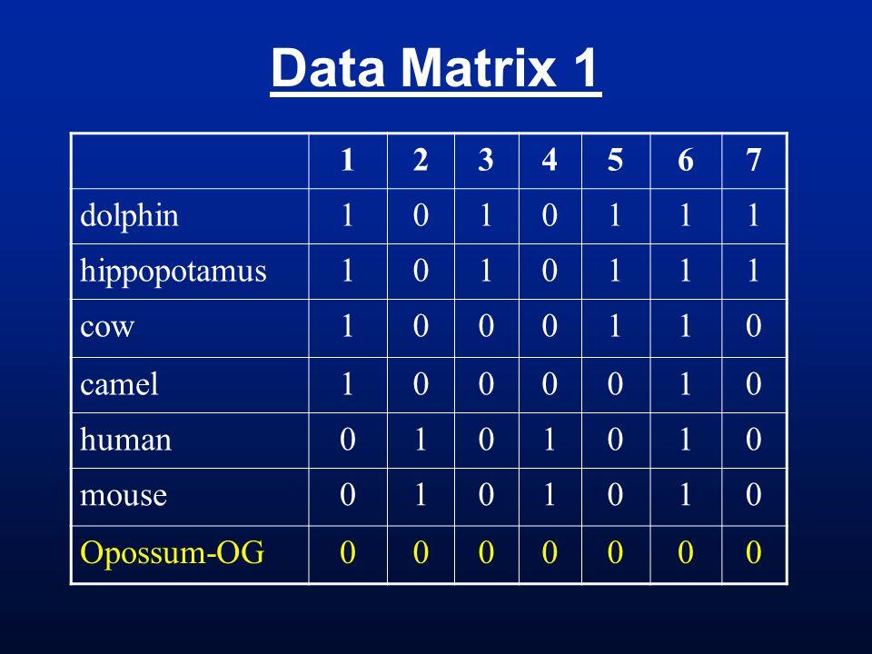 Data Matrix 1 1234567 dolphin1010111 hippopotamus1010111 cow1000110 camel1000010 human0101010 mouse0101010 Opossum-OG0000000
