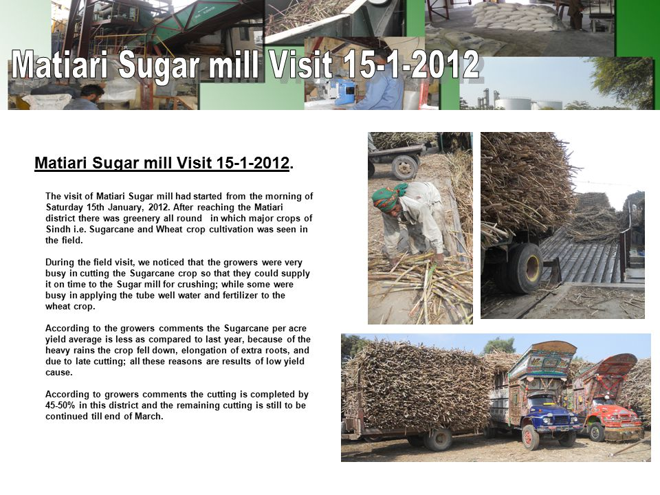 Matiari Sugar mill Visit 15-1-2012. The visit of Matiari Sugar mill had started from the morning of Saturday 15th January, 2012. After reaching the Ma