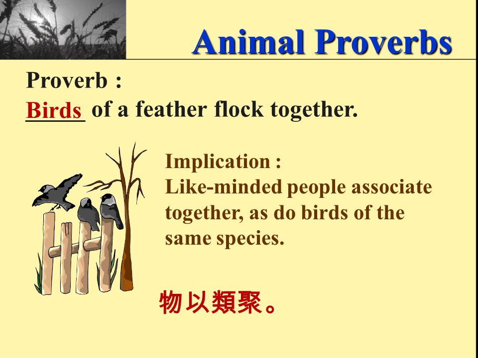 Proverb : A ____ in the hand is worth two in the bush. bird 一鳥在手勝過二鳥在林。 Animal Proverbs Implication : It is risky to sacrifice one thing or accomplish