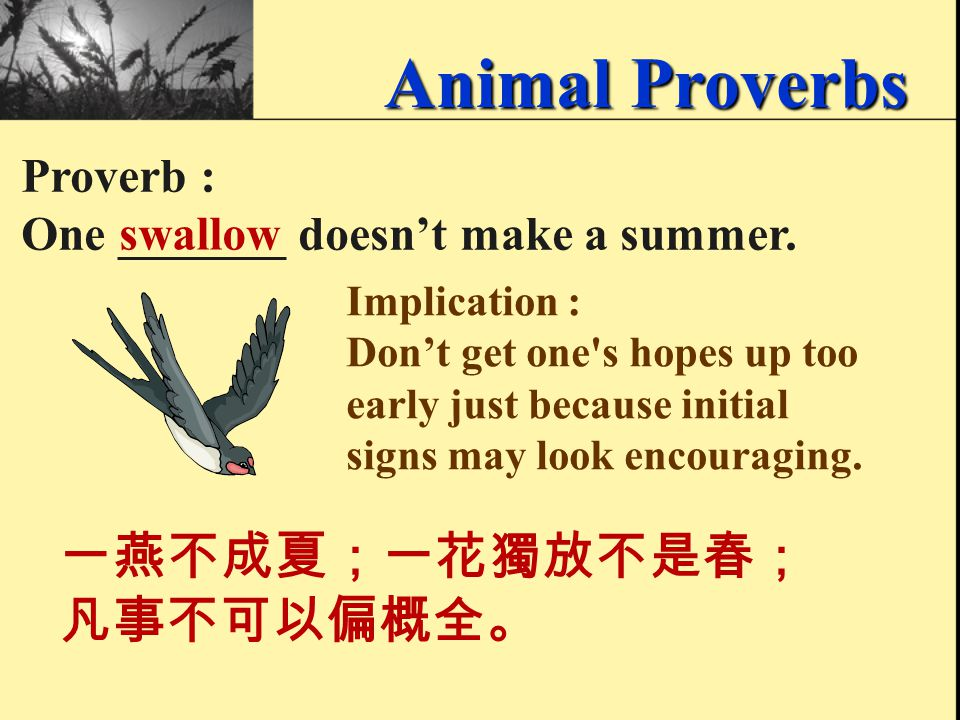 Proverb : If you run after two _____, you will catch neither. hares 同時追兩兔,兩頭都落空。 腳踏兩條船,必定落空。 Animal Proverbs Implication : You cannot do two things su