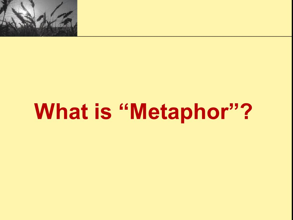 Activity One: Metaphors and Similes