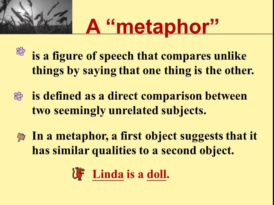 "What is ""Metaphor""?"