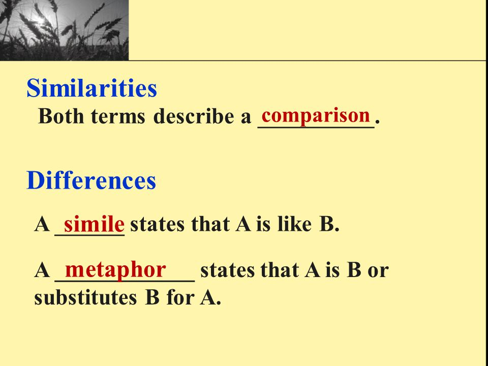 """Therefore, what is the difference between """"metaphor"""" and """"simile""""?"""