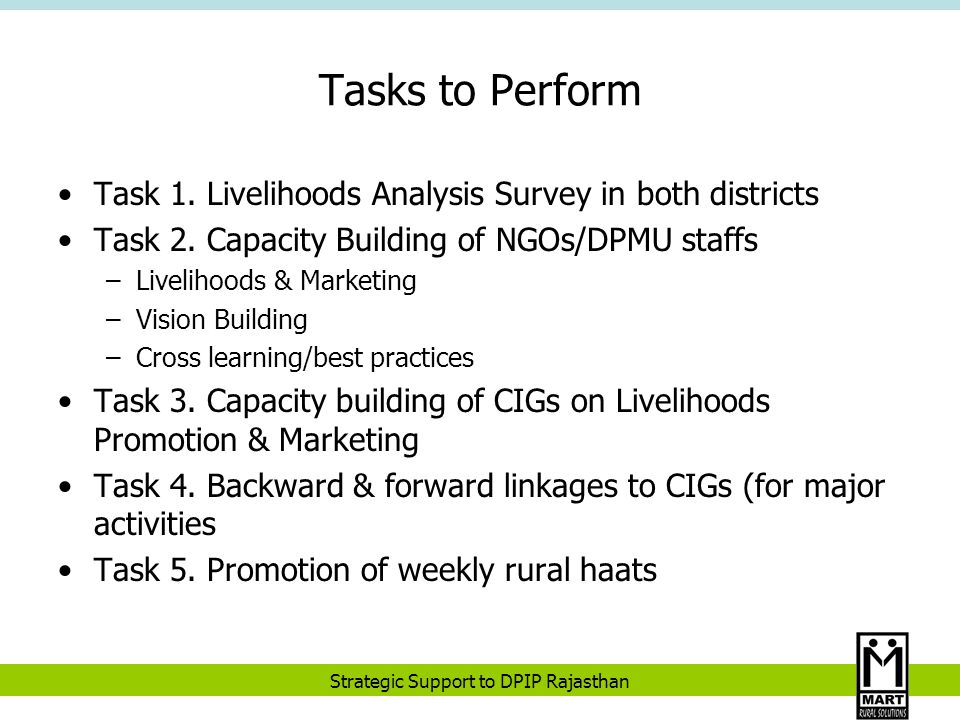 Strategic Support to DPIP Rajasthan What Worked.