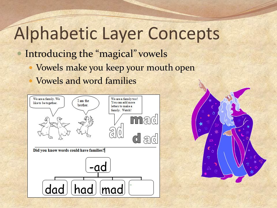 Alphabetic Layer Concepts Introducing the magical vowels Vowels make you keep your mouth open Vowels and word families