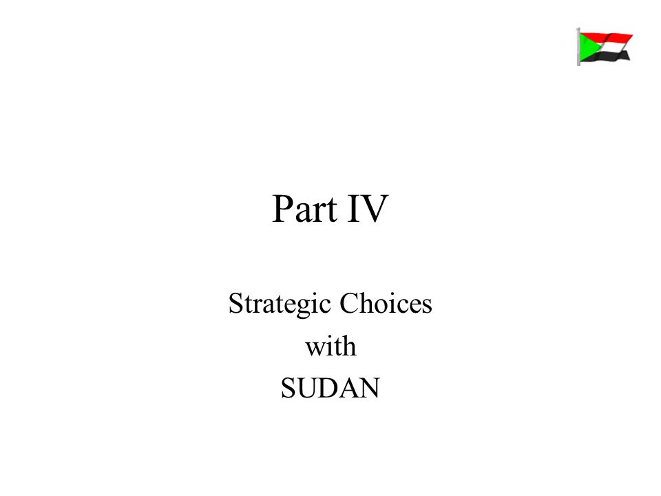 Part IV Strategic Choices with SUDAN