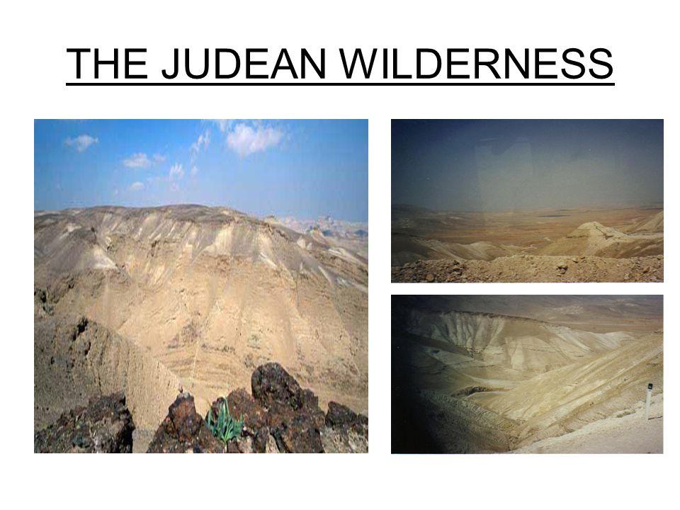 THE JUDEAN WILDERNESS