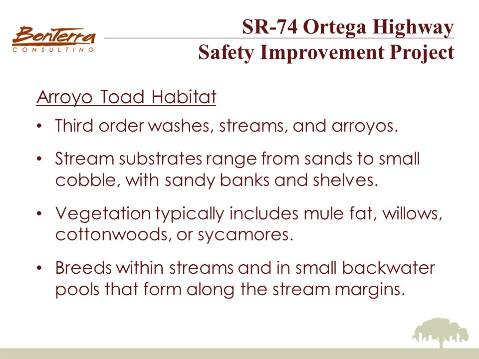 SR-74 Ortega Highway Safety Improvement Project Arroyo Toad Habitat Third order washes, streams, and arroyos.