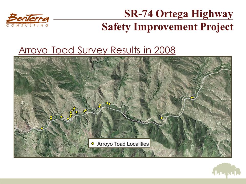 SR-74 Ortega Highway Safety Improvement Project Arroyo Toad Survey Results in 2008