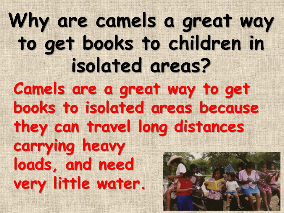 Why are camels a great way to get books to children in isolated areas? Camels are a great way to get books to isolated areas because they can travel l