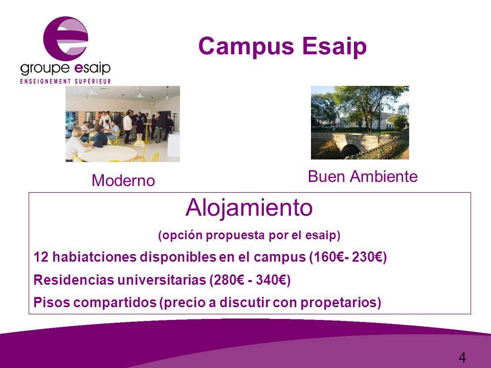 4 Campus Esaip Moderno Buen Ambiente Alojamiento (opción propuesta por el esaip) 12 habiatciones disponibles en el campus (160€- 230€) Residencias universitarias (280€ - 340€) Pisos compartidos (precio a discutir con propetarios)