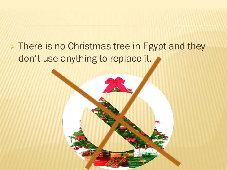  There is no Christmas tree in Egypt and they don't use anything to replace it.