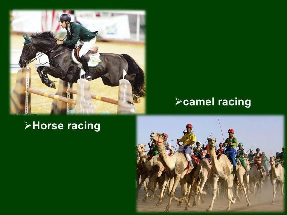  Horse racing  camel racing