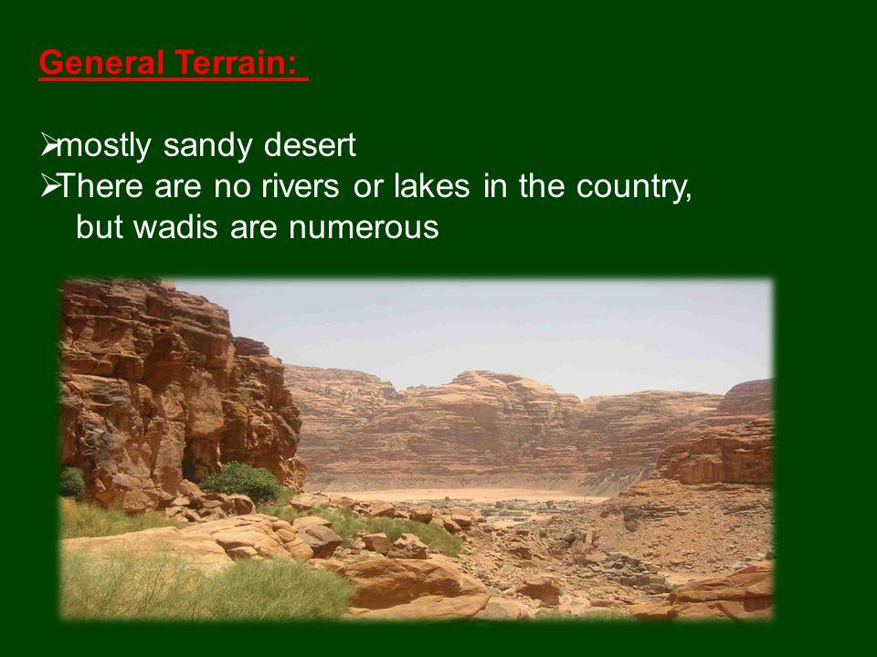  Scorpion  Ibex  Eagle  lizard