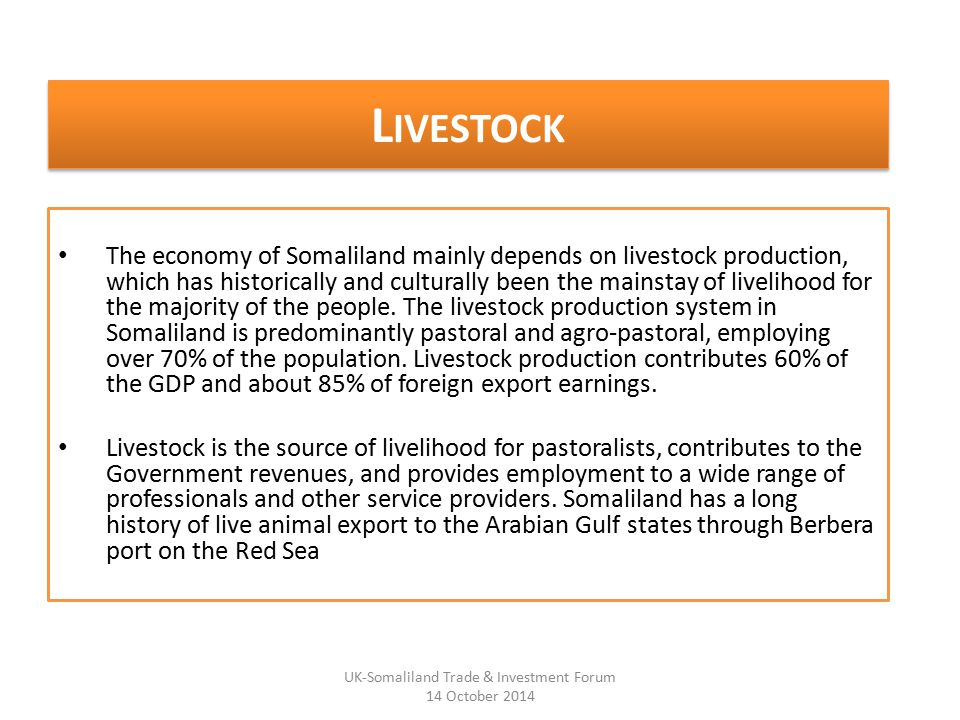 L IVESTOCK The economy of Somaliland mainly depends on livestock production, which has historically and culturally been the mainstay of livelihood for the majority of the people.