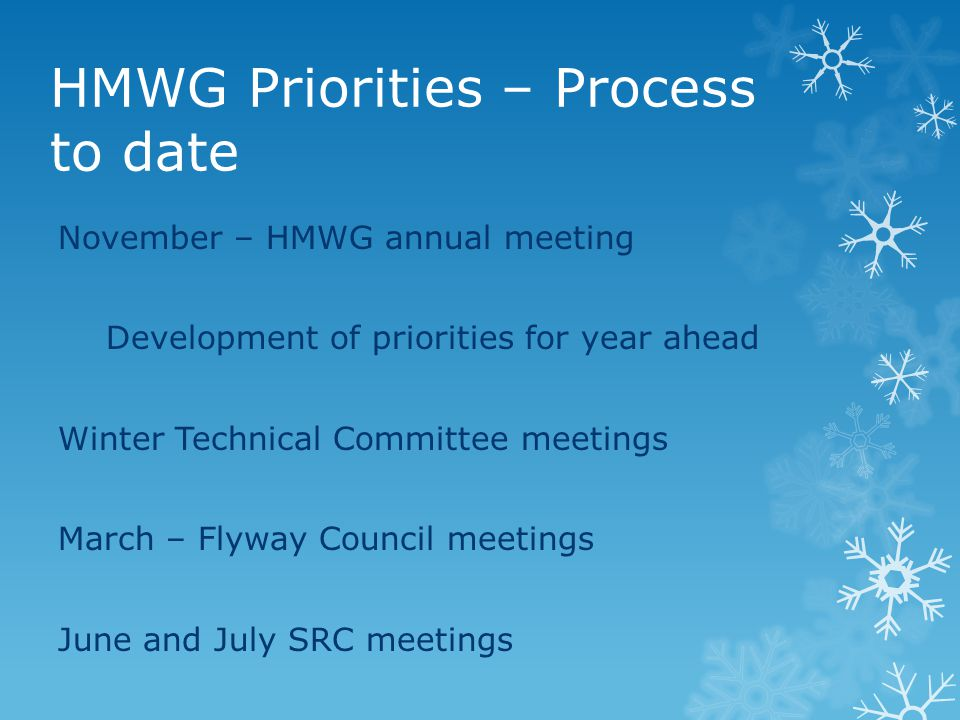 HMWG Priorities – Process to date November – HMWG annual meeting Development of priorities for year ahead Winter Technical Committee meetings March –