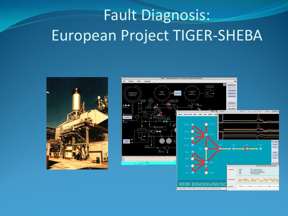 Fault Diagnosis: European Project TIGER-SHEBA