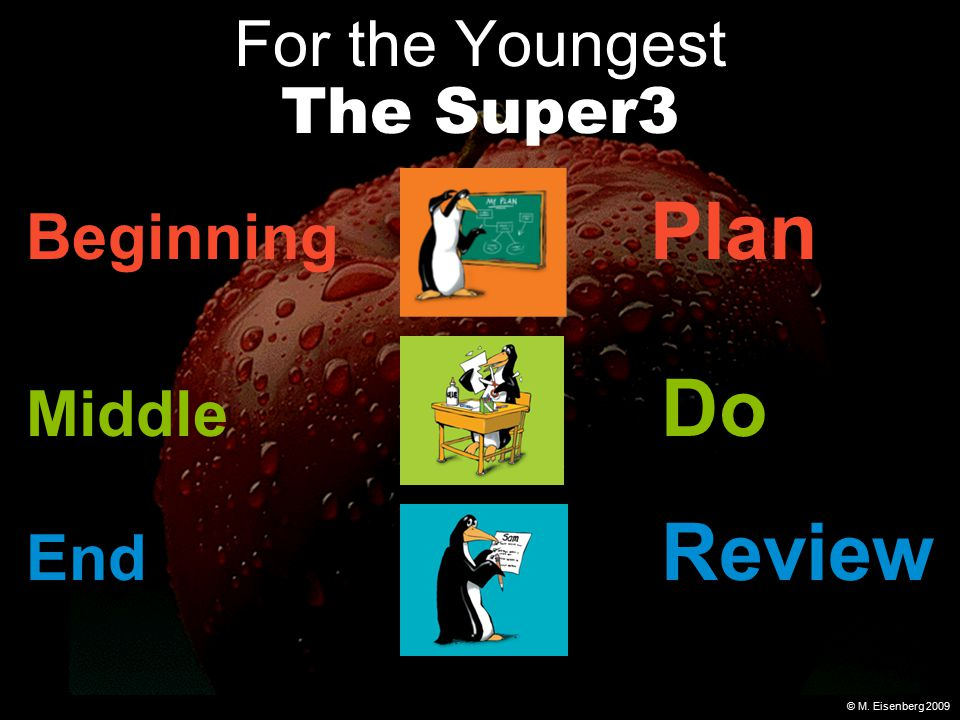 © M. Eisenberg 2009 For the Youngest The Super3 Beginning Plan Middle Do End Review
