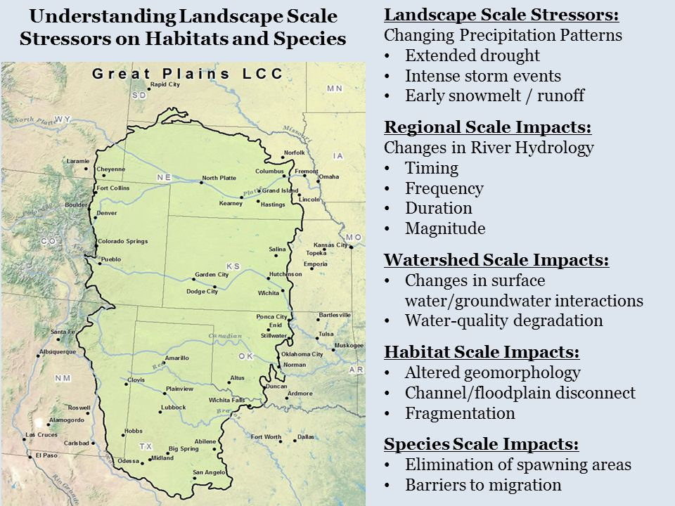 Landscape Scale Stressors: Changing Precipitation Patterns Extended drought Intense storm events Early snowmelt / runoff Regional Scale Impacts: Chang