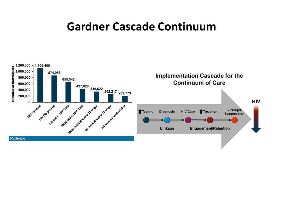 Gardner Cascade Continuum