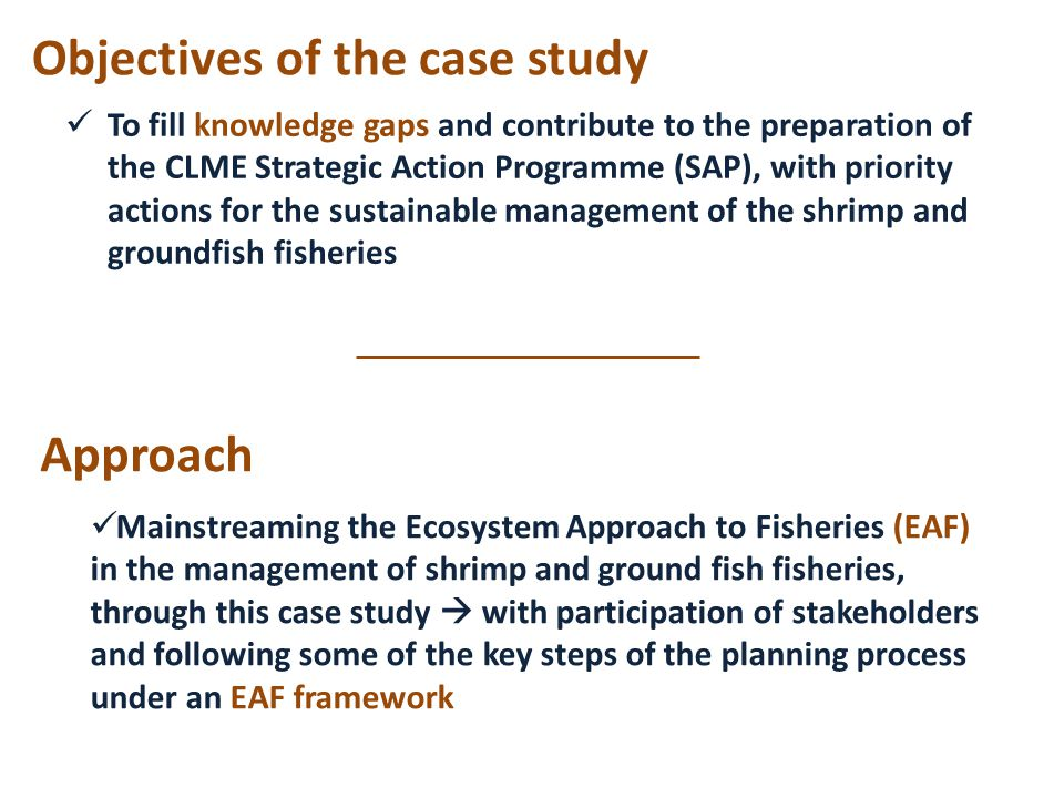 Objectives of the case study To fill knowledge gaps and contribute to the preparation of the CLME Strategic Action Programme (SAP), with priority actions for the sustainable management of the shrimp and groundfish fisheries Mainstreaming the Ecosystem Approach to Fisheries (EAF) in the management of shrimp and ground fish fisheries, through this case study  with participation of stakeholders and following some of the key steps of the planning process under an EAF framework Approach