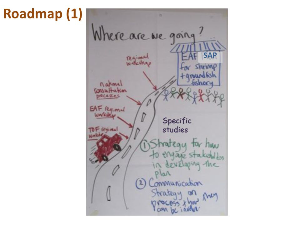 Roadmap (1) SAP Specific studies