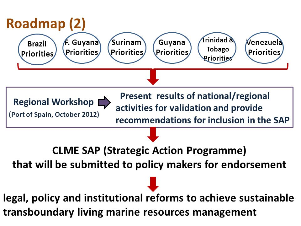 Roadmap (2) Brazil Priorities F.