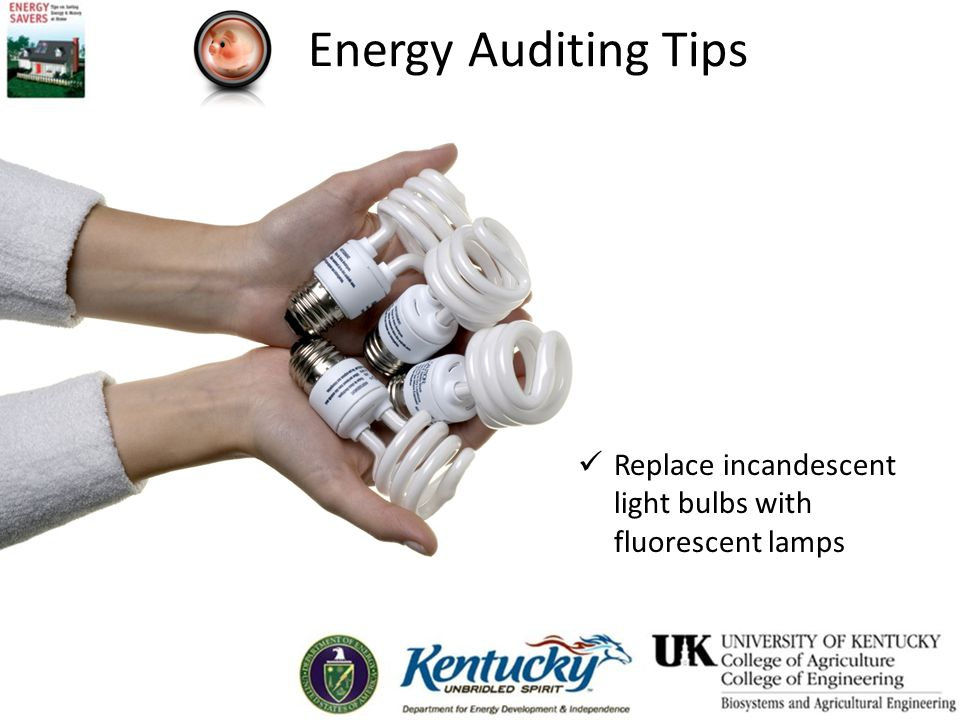 Energy Auditing Tips Replace incandescent light bulbs with fluorescent lamps