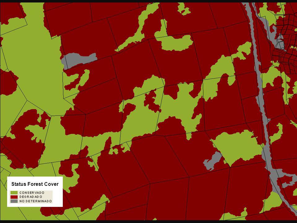 Estado de Cobertura Status Forest Cover