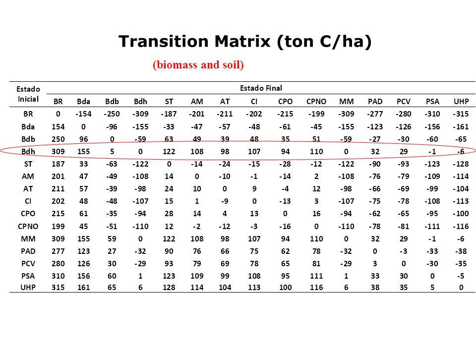 Transition Matrix (ton C/ha) (biomass and soil)
