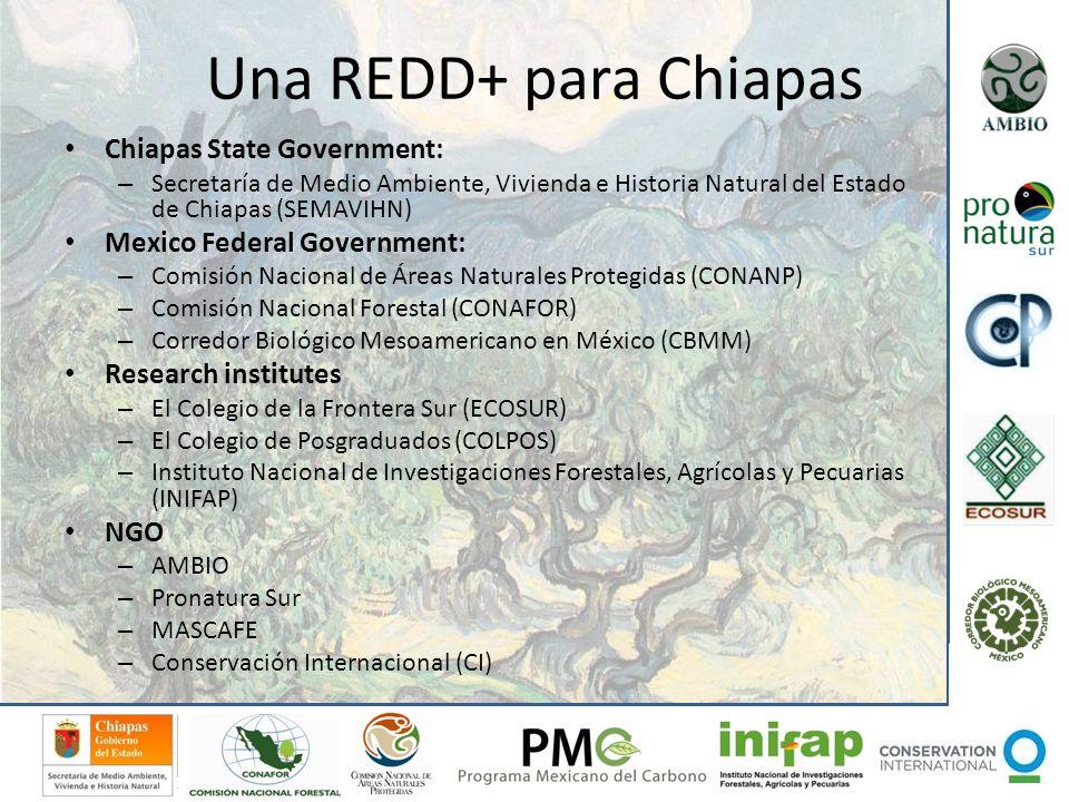 Una REDD+ para Chiapas Chiapas State Government: – Secretaría de Medio Ambiente, Vivienda e Historia Natural del Estado de Chiapas (SEMAVIHN) Mexico F
