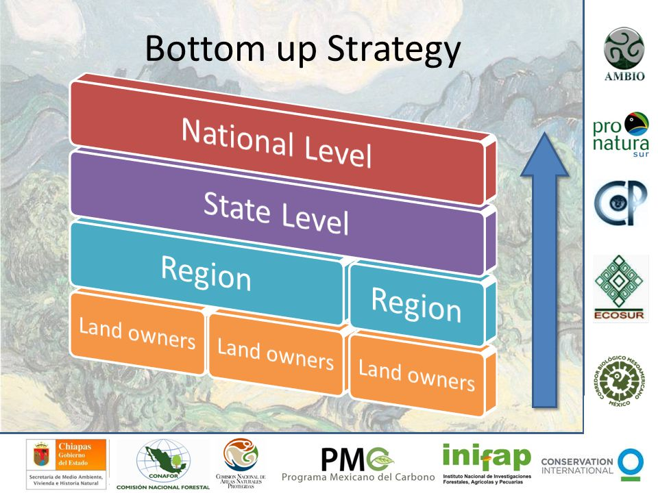Bottom up Strategy