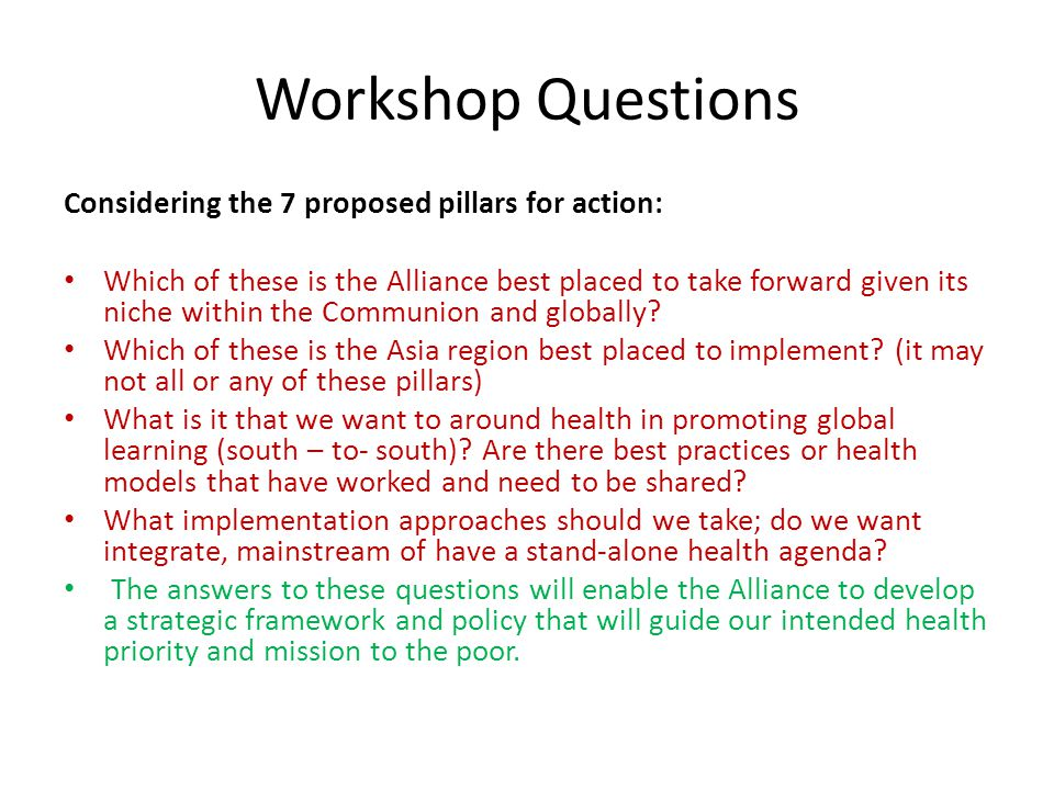 Workshop Questions Considering the 7 proposed pillars for action: Which of these is the Alliance best placed to take forward given its niche within th