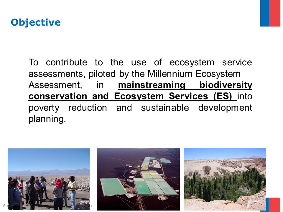 Gobierno de Chile | Ministerio del Medio Ambiente Objective To contribute to the use of ecosystem service assessments, piloted by the Millennium Ecosystem Assessment, in mainstreaming biodiversity conservation and Ecosystem Services (ES) into poverty reduction and sustainable development planning.