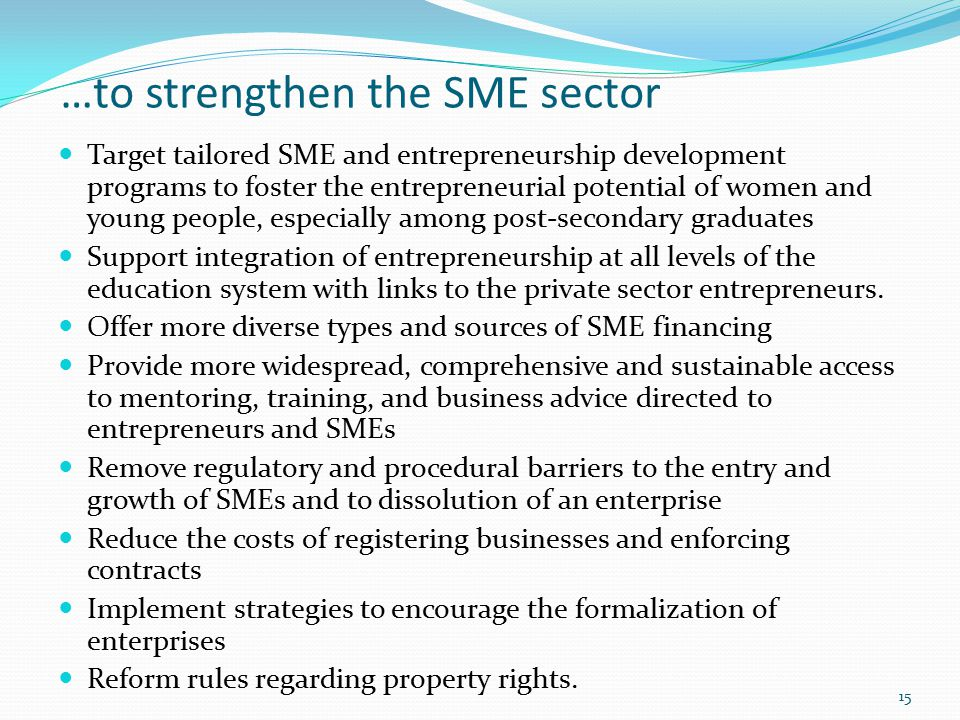 …to strengthen the SME sector Target tailored SME and entrepreneurship development programs to foster the entrepreneurial potential of women and young people, especially among post-secondary graduates Support integration of entrepreneurship at all levels of the education system with links to the private sector entrepreneurs.