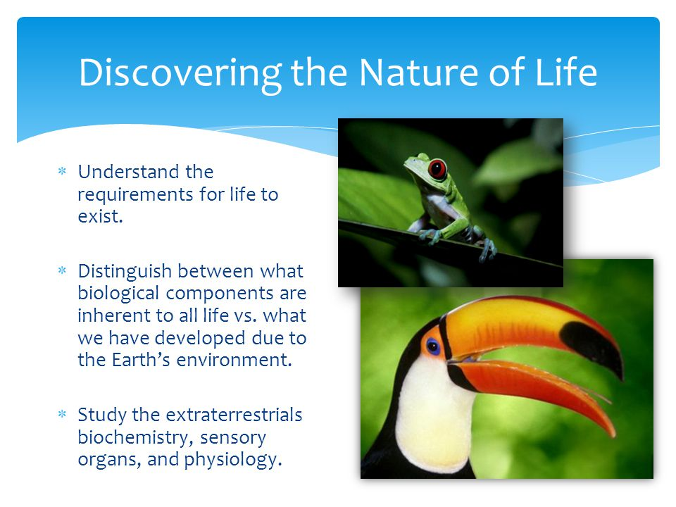 Discovering the Nature of Life  Understand the requirements for life to exist.