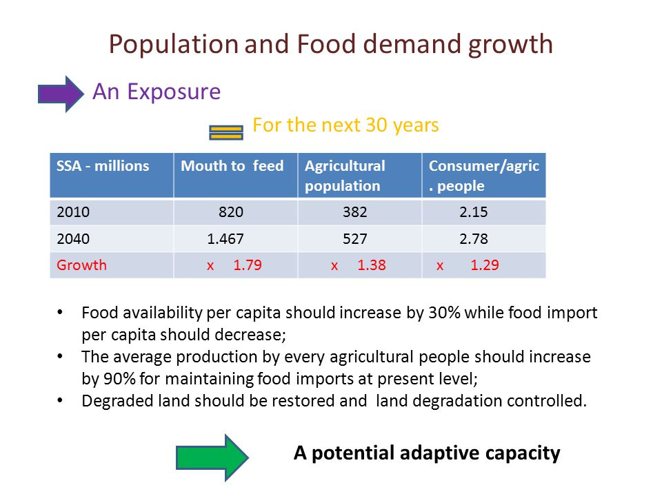 Population and Food demand growth An Exposure For the next 30 years SSA - millionsMouth to feedAgricultural population Consumer/agric. people 2010 820