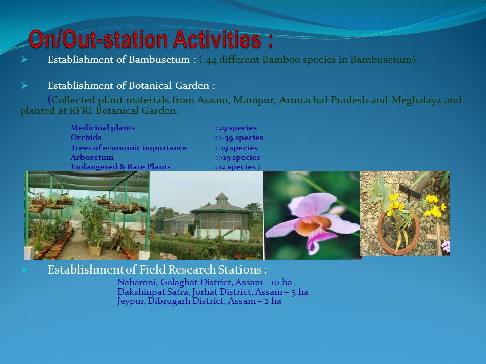  Establishment of Bambusetum : ( 44 different Bamboo species in Bambusetum)  Establishment of Botanical Garden : ( Collected plant materials from Assam, Manipur, Arunachal Pradesh and Meghalaya and planted at RFRI Botanical Garden.
