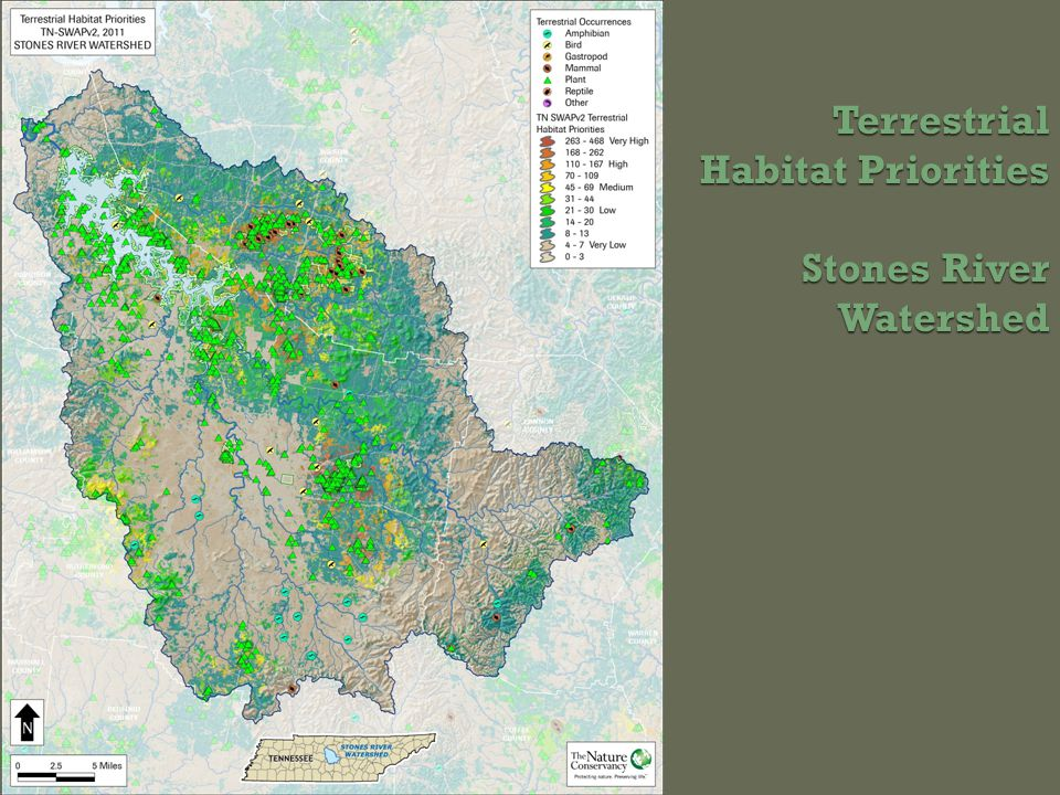 Terrestrial Habitat Priorities Stones River Watershed
