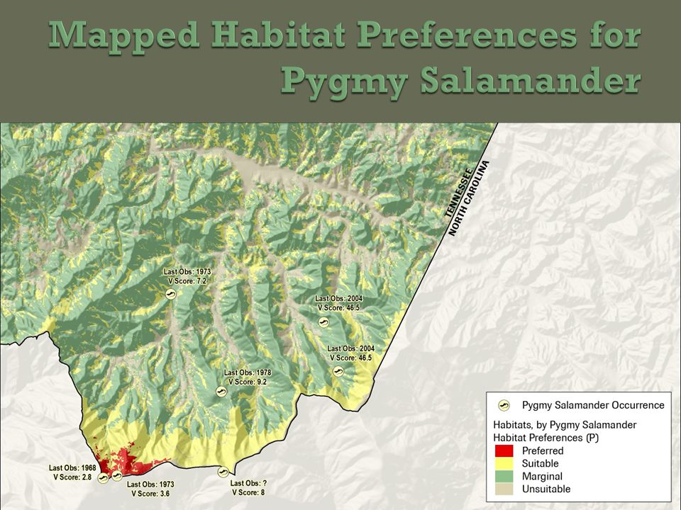 Potential Wetland Priorities Stones River Watershed