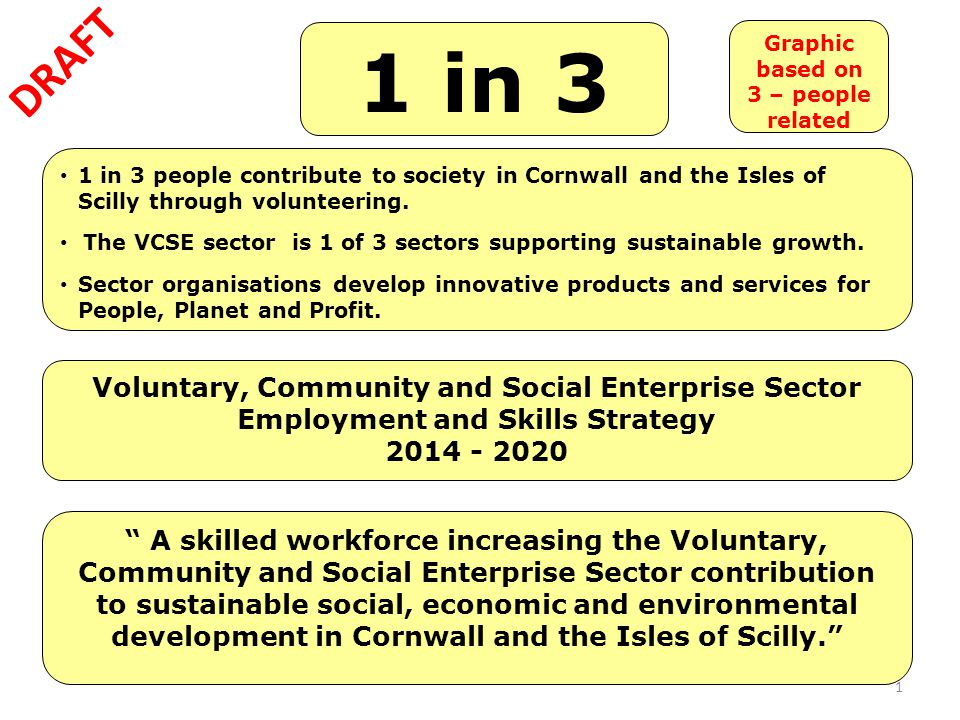 "1 Voluntary, Community and Social Enterprise Sector Employment and Skills Strategy 2014 - 2020 1 in 3 "" A skilled workforce increasing the Voluntary,"