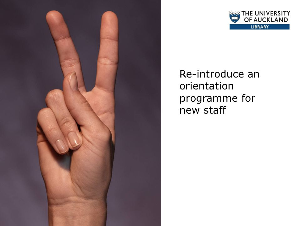 Re-introduce an orientation programme for new staff
