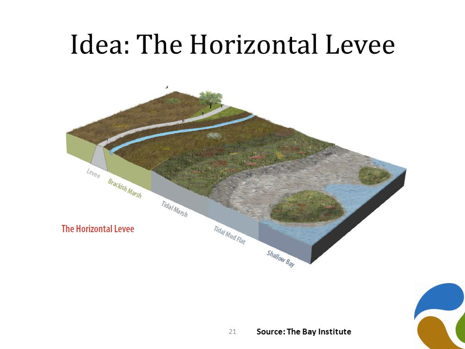 Idea: The Horizontal Levee Source: The Bay Institute 21