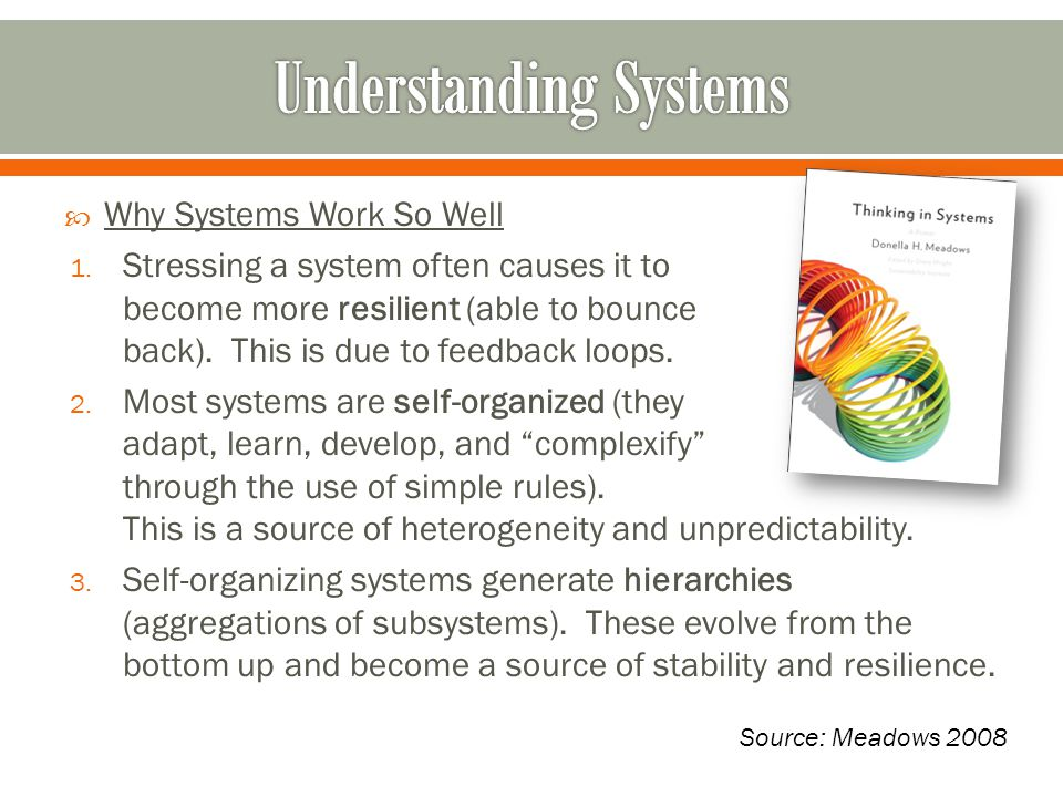  Why Systems Work So Well 1.