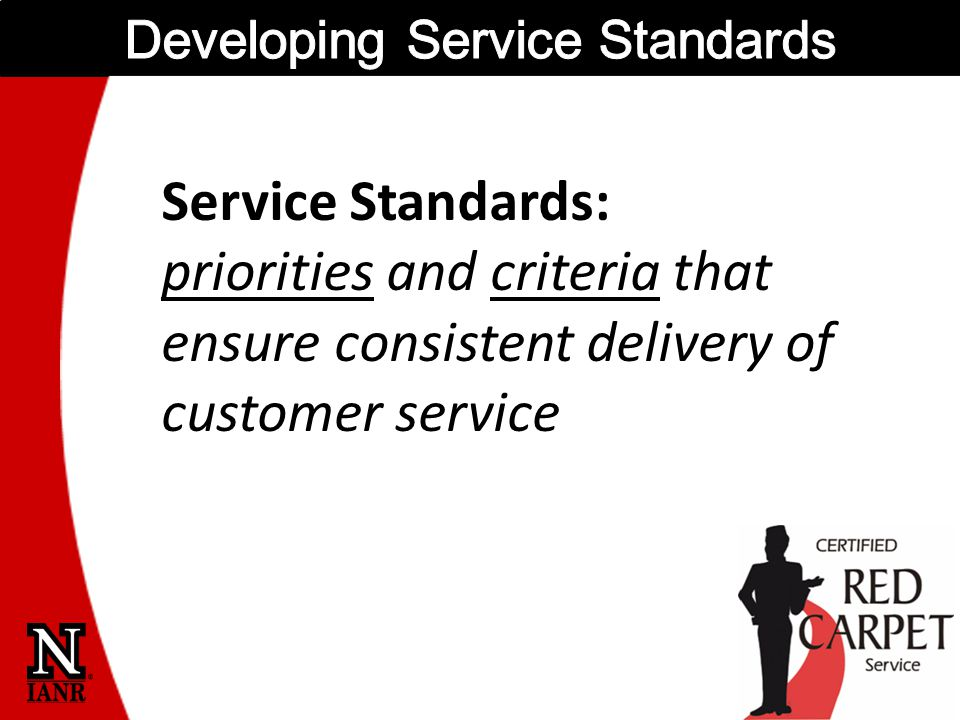 Service Standards: priorities and criteria that ensure consistent delivery of customer service