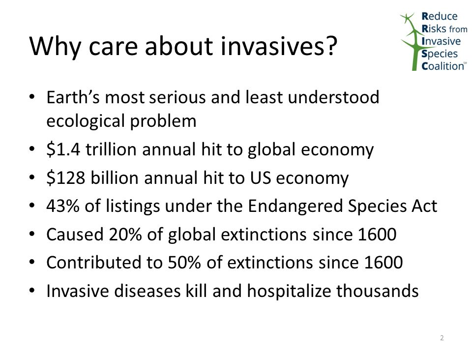 Why care about invasives.