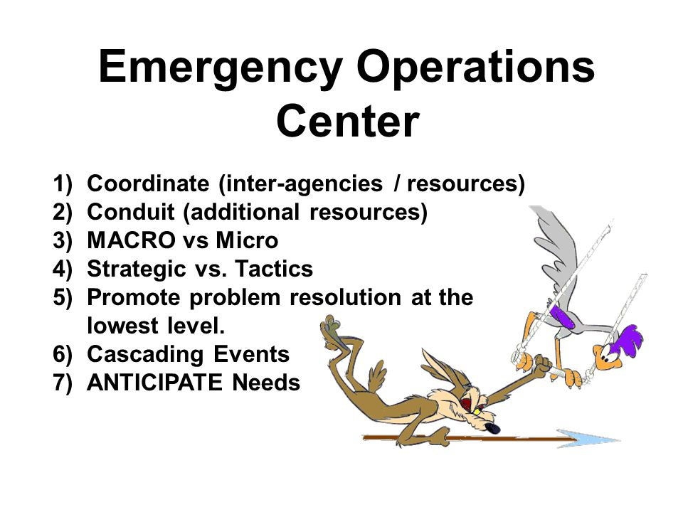 Notification Assessment Initial Briefing EOC Director Sets/Adjusts EOC Mission Policy & Priorities Conduct Section Meetings and Set SECTION Objectives