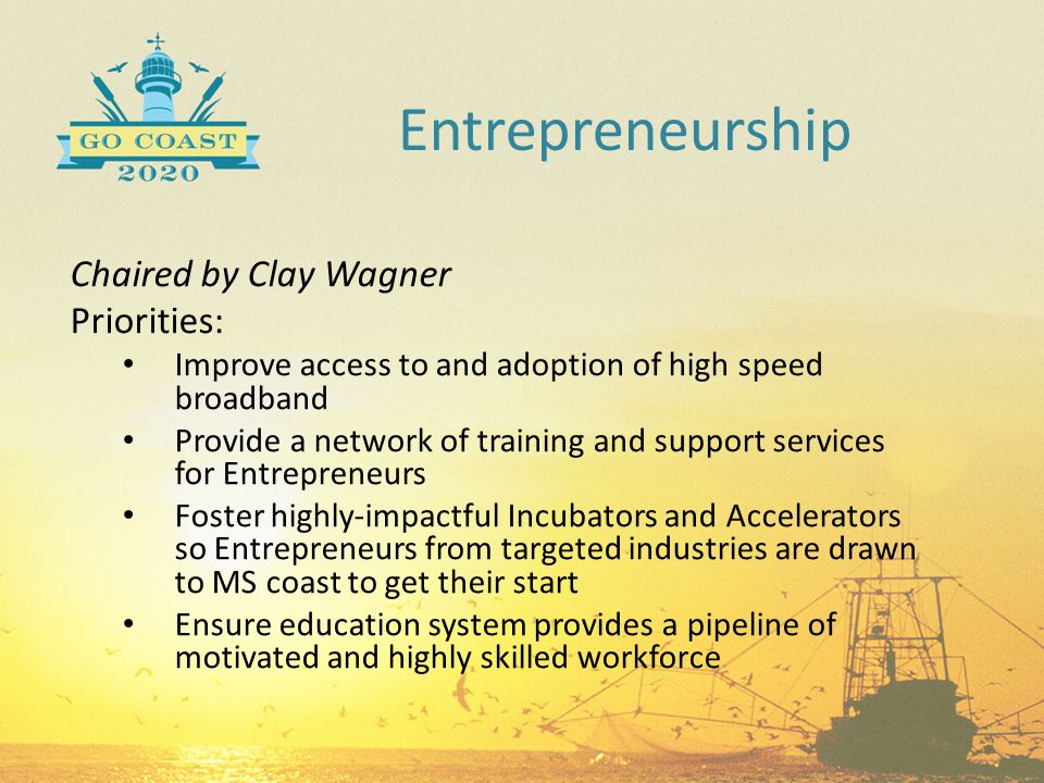 Entrepreneurship Chaired by Clay Wagner Priorities: Improve access to and adoption of high speed broadband Provide a network of training and support s