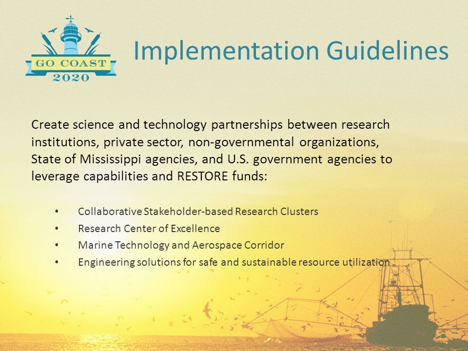 Implementation Guidelines Create science and technology partnerships between research institutions, private sector, non-governmental organizations, St