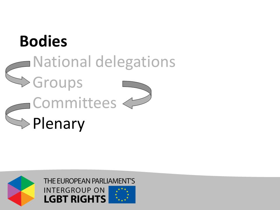 Bodies - National delegations - Groups - Committees - Plenary